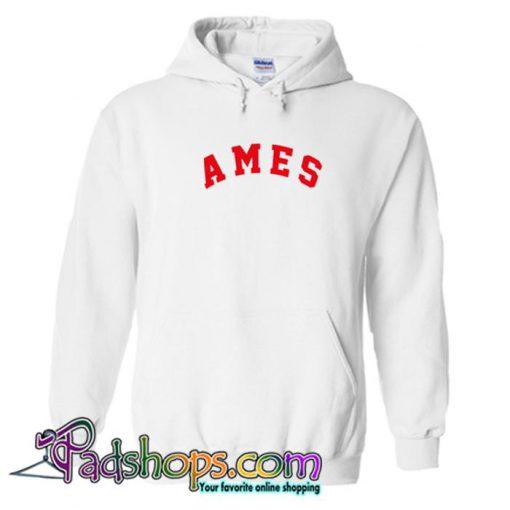Ames Hoodie (PSM)